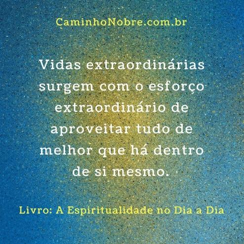 Vidas extraordinárias surgem com o esforço extraordinário de aproveitar tudo de melhor que há dentro de si mesmo.