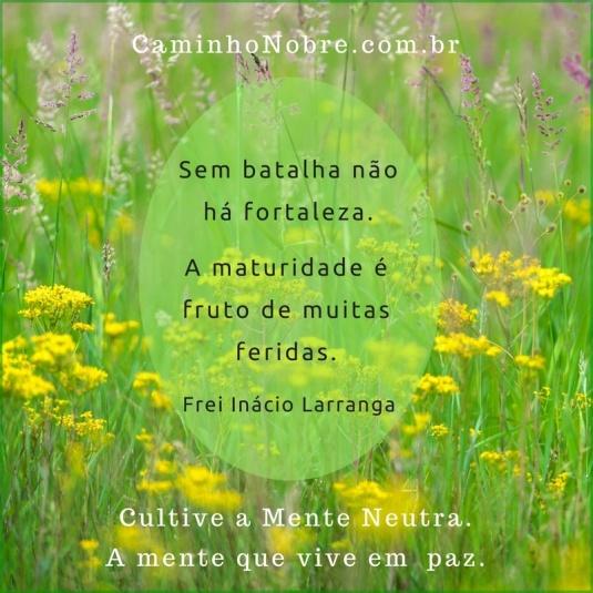 Sem batalhas não há fortaleza. A maturidade é fruto de muitas feridas. Frei Inácio Larranga