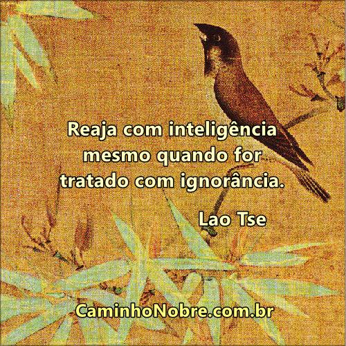Reaja com inteligência mesmo quando for tratado com ignorância. Lao Tse