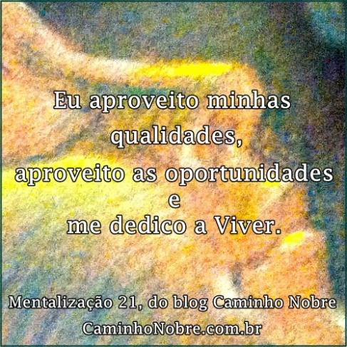 Eu aproveito minhas qualidades, aproveito as oportunidades e me dedico a Viver.