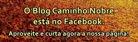 blog-caminho-nobre-no-facebook