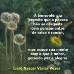 benevolencia 2