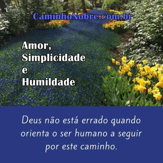 Amor, simplicidade e humildade. Deus não está errado quando orienta o ser humano a seguir por este caminho