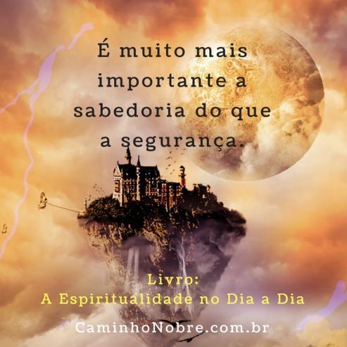 É muito mais importante a sabedoria do que a segurança. Livro A Espiritualidade no Dia a Dia