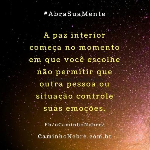 A paz interior começa no momento em que você escolhe não permitir que outra pessoa ou situação controle suas emoções.