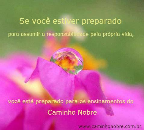 Se você estiver preparado para assumir a responsabilidade pela sua vida, você está preparado para os ensinamentos do Caminho Nobre