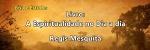 Leia o livro espiritualista A Espiritualidade no Dia a Dia