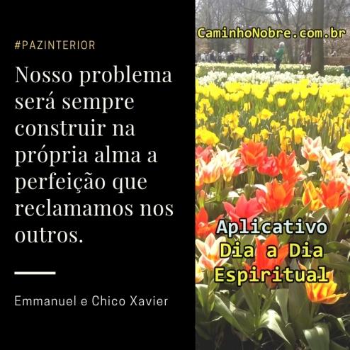Nosso problema será sempre construir na própria alma a perfeição que reclamamos nos outros. Emmanuel e Chico Xavier